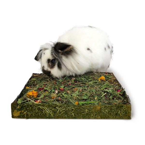 Tapis à creuser lapin