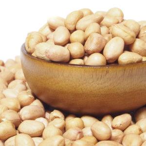 Cacahuètes séchées