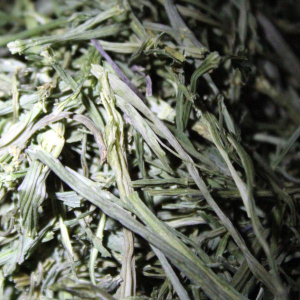 celeri-branche