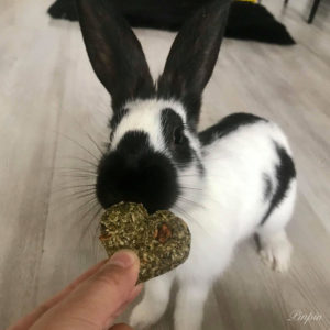 Coeur a la pomme