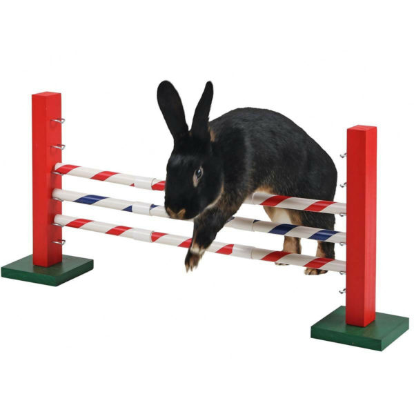 obstacle-kaninhop-agility