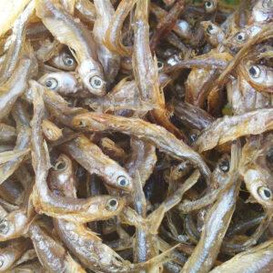 Omena poissons séchés pour chiens