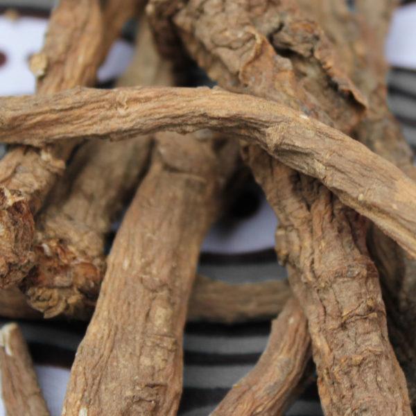 racines-de-pissenlits-1