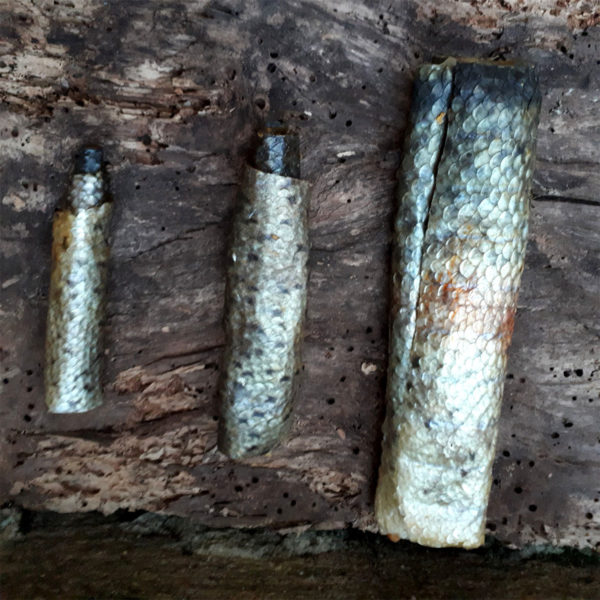 rouleau-de-truite-fumee