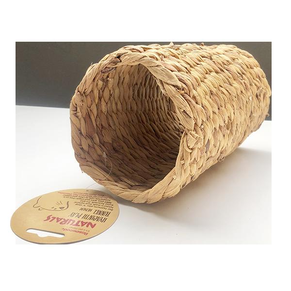 tunnel-hyacinthe
