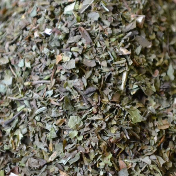 feuilles-menthe-verte