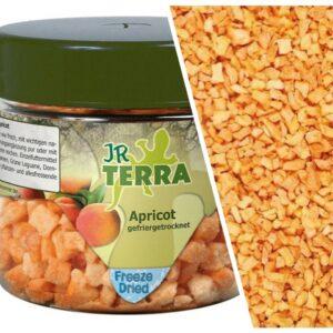 abricots lyophilisés JRFARM