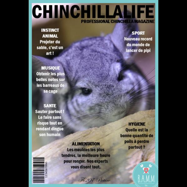 couverture-magazine-chinchilla-bamm-paris