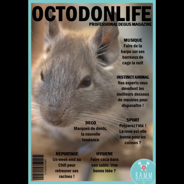 couverture-magazine-octodon-bamm-paris