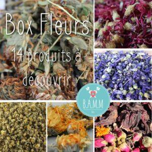 box découverte fleurs