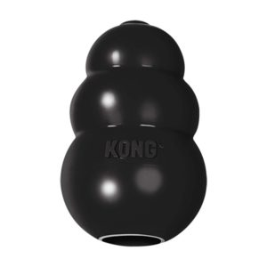 KONG Extreme chien