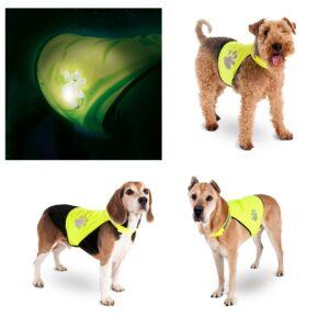 Gilet sécurité pour chiens