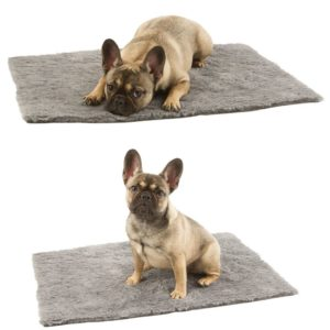 tapis furbed chiens lapins cochons d'inde