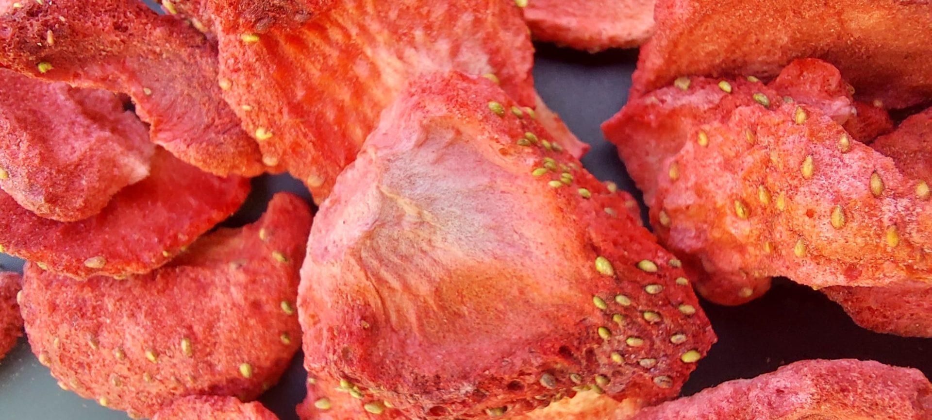 fraises lapins rongeurs bamm paris