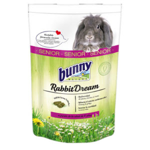 Bunny dream rabbit dream bunny rêve lapin senior bunny nature