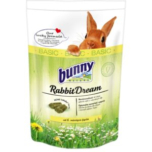 rabbit dream basic lapin bunny nature