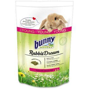 rabbit dream bunny nature young jeune lapin