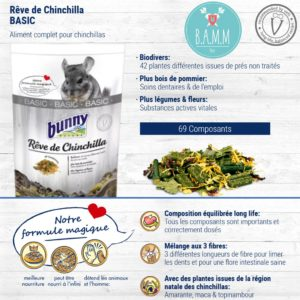 Chinchilla Dream Basic Bunny Nature