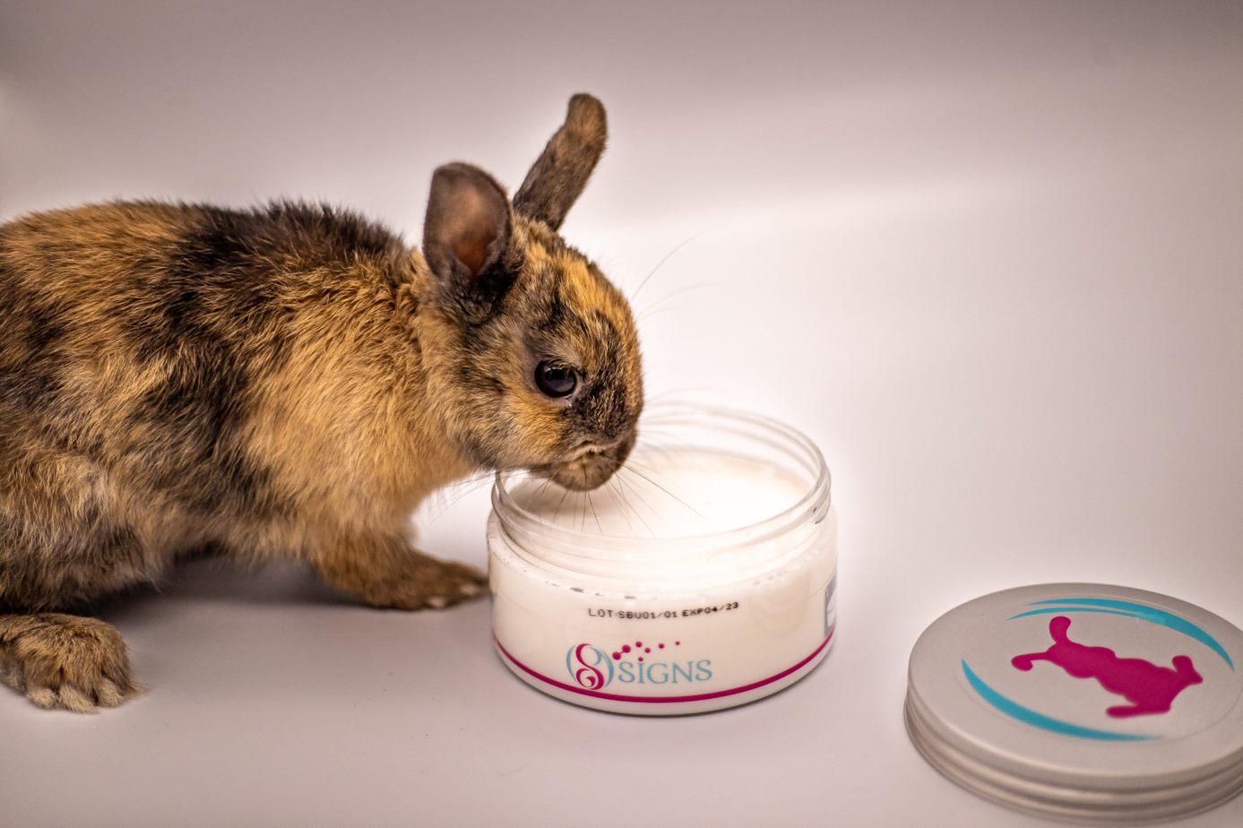 SecureBunny Signs lapin peureux stressé