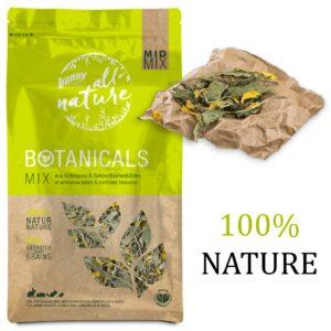 BOTANICALS - Mid mix - Echinacée et pétales de tournesol