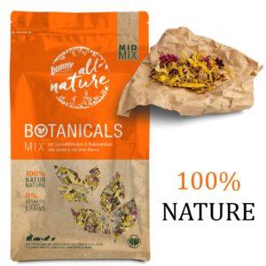 BOTANICALS - Mid mix - pâquerettes et fleurs de trèfle rouge - Bunny nature