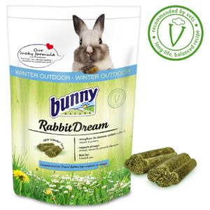 Rabbit dream Hiver lapin extérieur bunny nature